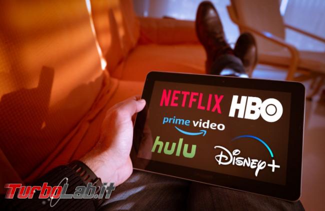Attenzione falsi siti Netflix Disney + rubano dati - FrShot_1587450901