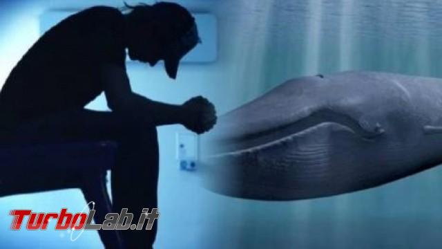 """Blue Whale """"suicidio sociale"""": quanto c'è vero questo fenomeno?"""