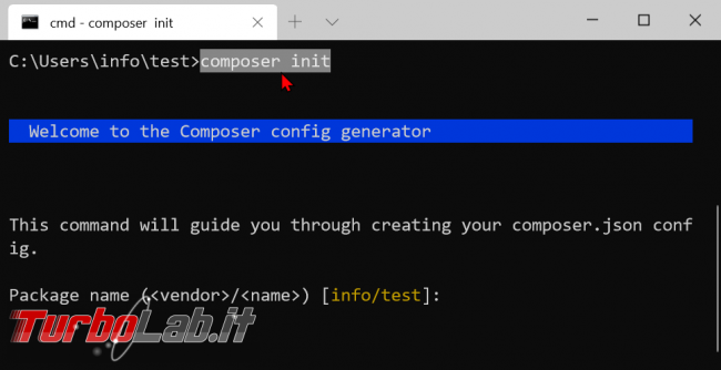 Come installare Composer Windows 10: Guida Definitiva - zShotVM_1582529564