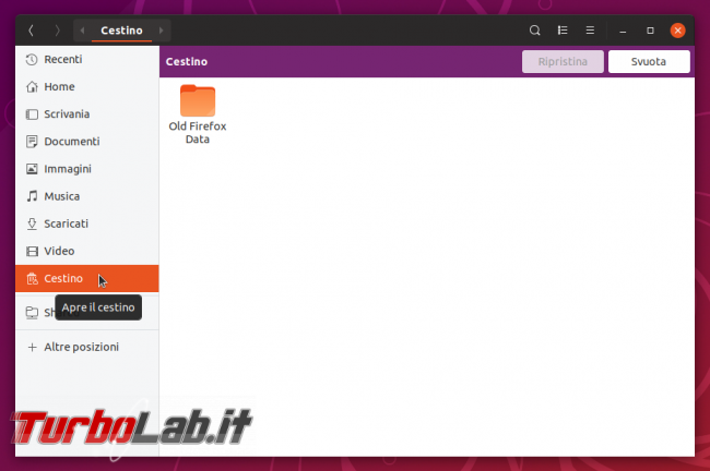 Come rimuovere / eliminare / nascondere Cestino desktop Ubuntu (guida)