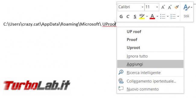 Come salvare dizionario personalizzato Microsoft Word
