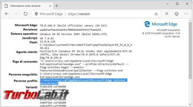 Come scoprire versione Microsoft Edge dove si trova programma profilo utente
