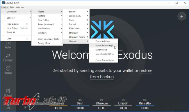 Come visualizzare/esportare chiave privata wallet Exodus