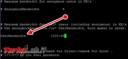 Configurare server FTP Linux CentOS/Ubuntu: Guida rapida Pure-FTPd - pure-ftpd.conf 05