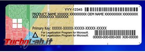 dizionario tipi licenze utilizzate distribuire programmi