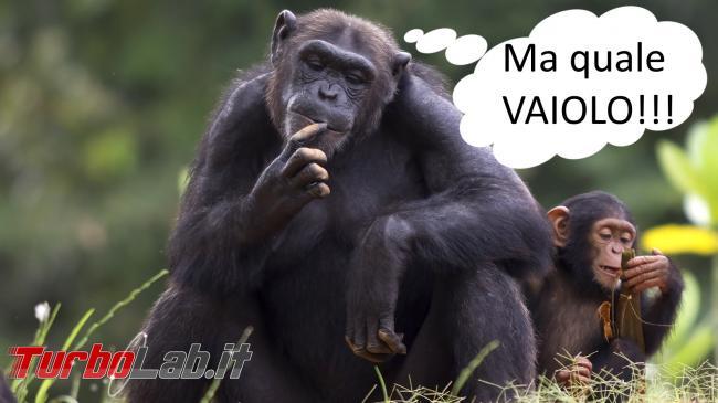 Emergenza vaiolo scimmie barcone: è fake news 2014