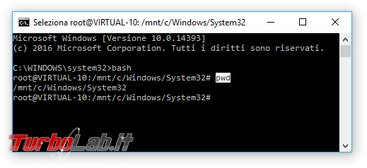 Grande Guida Bash Windows 10: come installare Sottosistema Windows Linux (WSL) ed eseguire programmi Linux/Ubuntu sotto Windows 10
