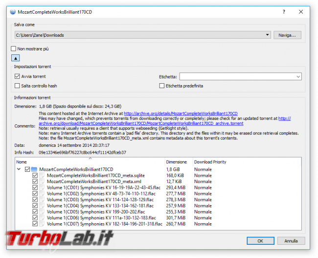 Grande Guida BitTorrent - qbittorrent download