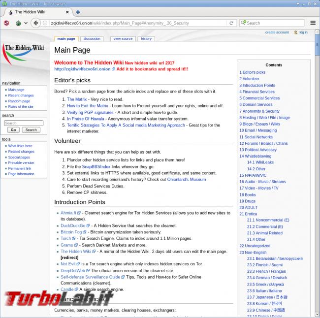 Grande Guida Tor: navigazione anonima gratuita, senza censura VPN
