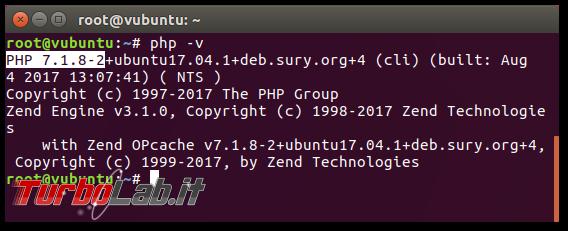 Guida Apache PHP 7.3: come attivare/installare PHP-FPM Apache Ubuntu/CentOS - 04_php-v_installed
