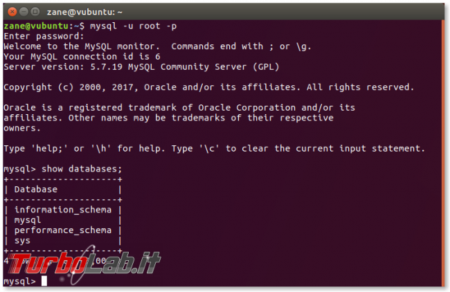 Guida: come installare MySQL Linux (Ubuntu/CentOS) - mysql show databases
