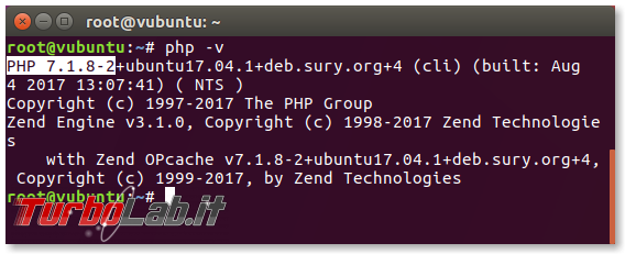 Guida: come installare PHP 8 Linux Ubuntu CentOS (PHP-FPM) - 04_php-v_installed