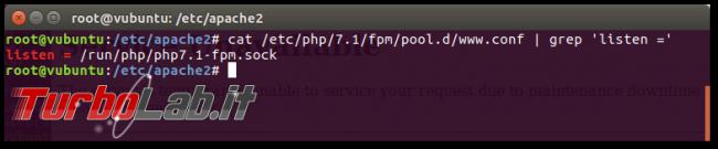 Guida: come installare PHP 8 Linux Ubuntu CentOS (PHP-FPM)
