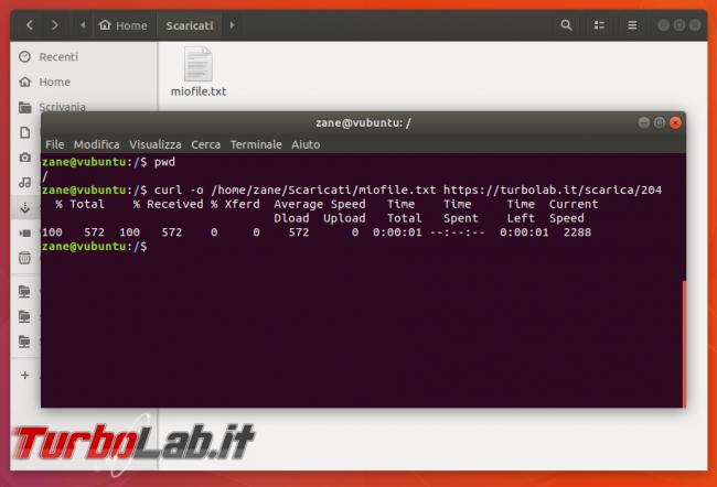 Guida curl wget, esempi: come scaricare file linea comando (Linux Ubuntu/CentOS, Windows 10, Mac)