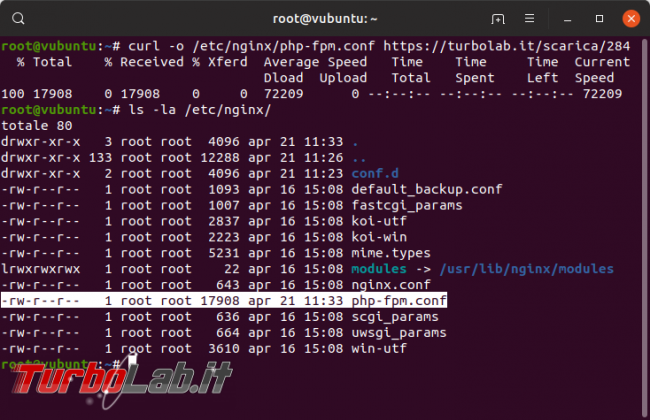 Guida definitiva Nginx PHP 8 Ubuntu CentOS: come attivare, installare, configurare PHP-FPM Nginx Linux - php-fpm scaricato
