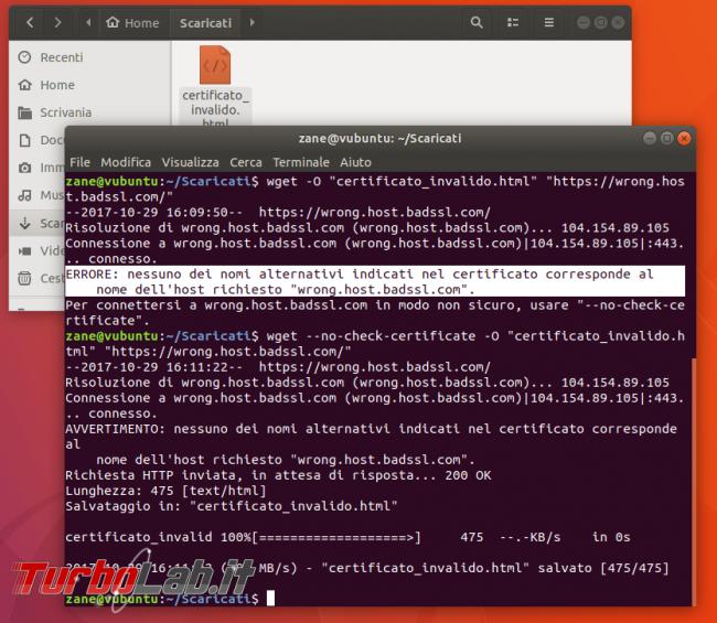 Guida Linux: come scaricare file linea comando curl wget (Ubuntu/CentOS)