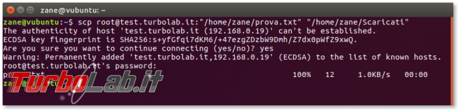 Guida Linux: download upload via SFTP/SCP (SSH) linea comando (Ubuntu/CentOS) - Schermata del 2017-09-26 09-55-05