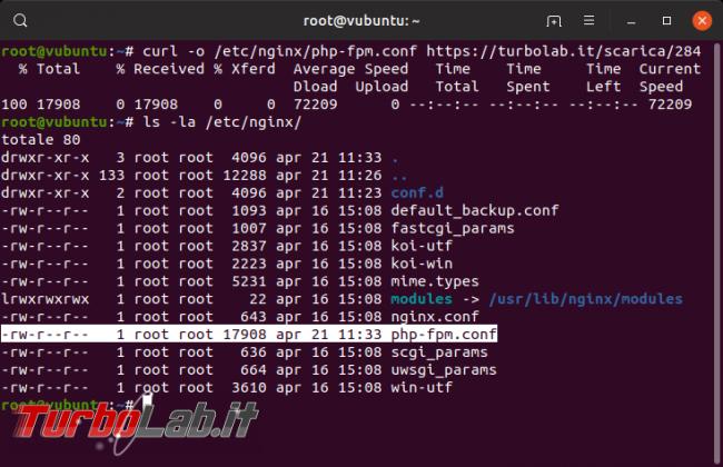 Guida Nginx PHP 7.3: come attivare/installare PHP-FPM Nginx Ubuntu/CentOS - php-fpm scaricato
