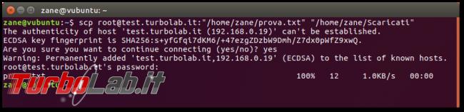Guida SFTP/SCP, esempi: download upload file via SSH linea comando (Linux Ubuntu/CentOS) - Schermata del 2017-09-26 09-55-05