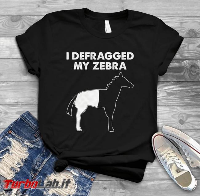 Humour meme informatici, programmatori smanettoni - defragged my zebra