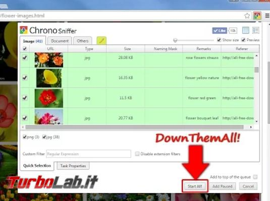 migliori download manager Firefox Chrome - download manager chrome
