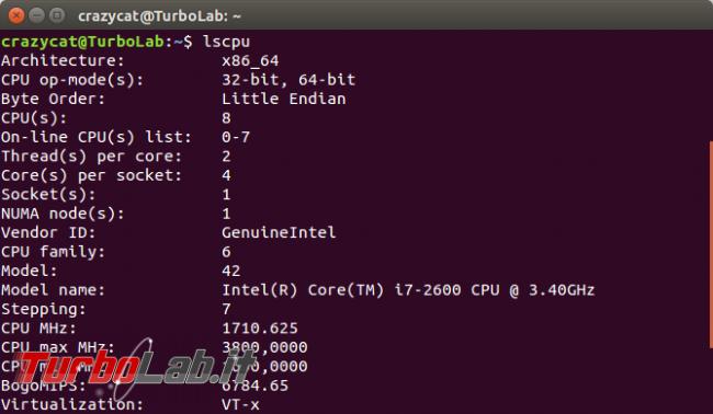 Raccogliere informazioni Ubuntu direttamente terminale