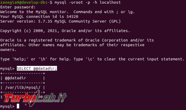 [risolto] MySQL 8 Ubuntu: come spostare file database salvare dati altro percorso (disco rete, SSD, NAS, USB)