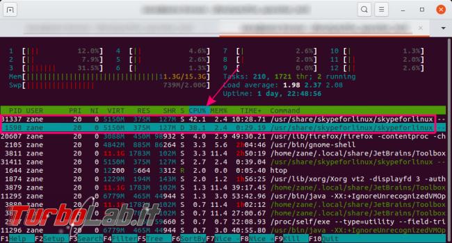 [risolto] Problema Ubuntu 20.04: desktop finestre bloccate (freeze). Cosa fare, come risolvere - htop skype linux alta cpu