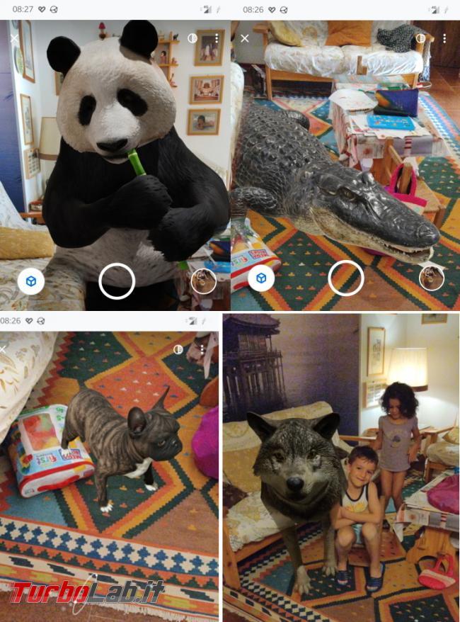 Trasforma casa zoo Google