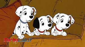 truffa cuccioli online